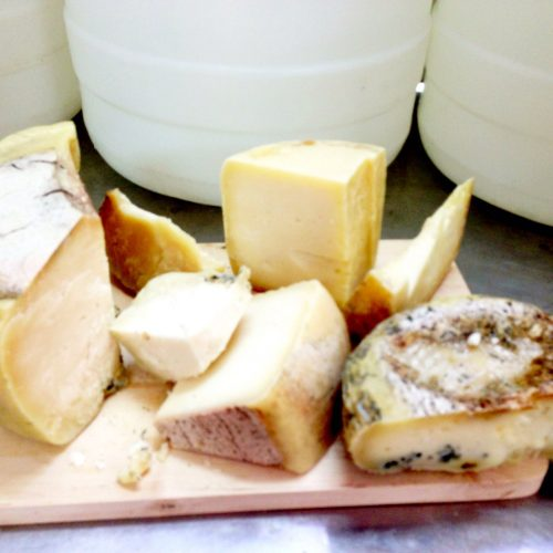 cheese+from+goats+milk